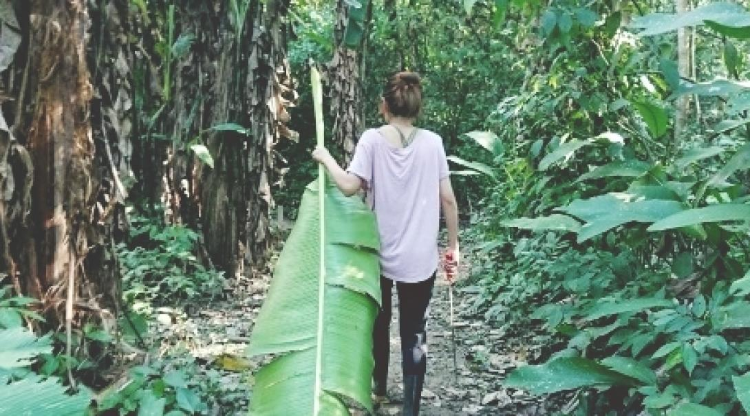 ペルーで熱帯雨林保護 L.M.